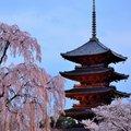 東寺 (教王護国寺) To-ji Temple