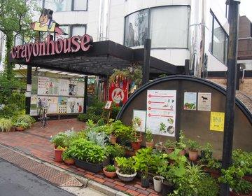 子連れ×表参道散策♪クレヨンハウス〜hanami (ハナミ)カフェでトシヨロイズカ試食会♪