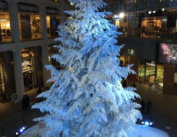 【東京駅贅沢プラン】白いツリーと五郎丸歩とステーキや牡蠣がのった贅沢ハヤシライス
