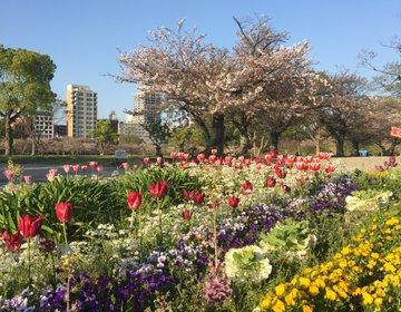 福岡観光「大濠公園」で花見&デートにもお勧めの景色の良いカフェ