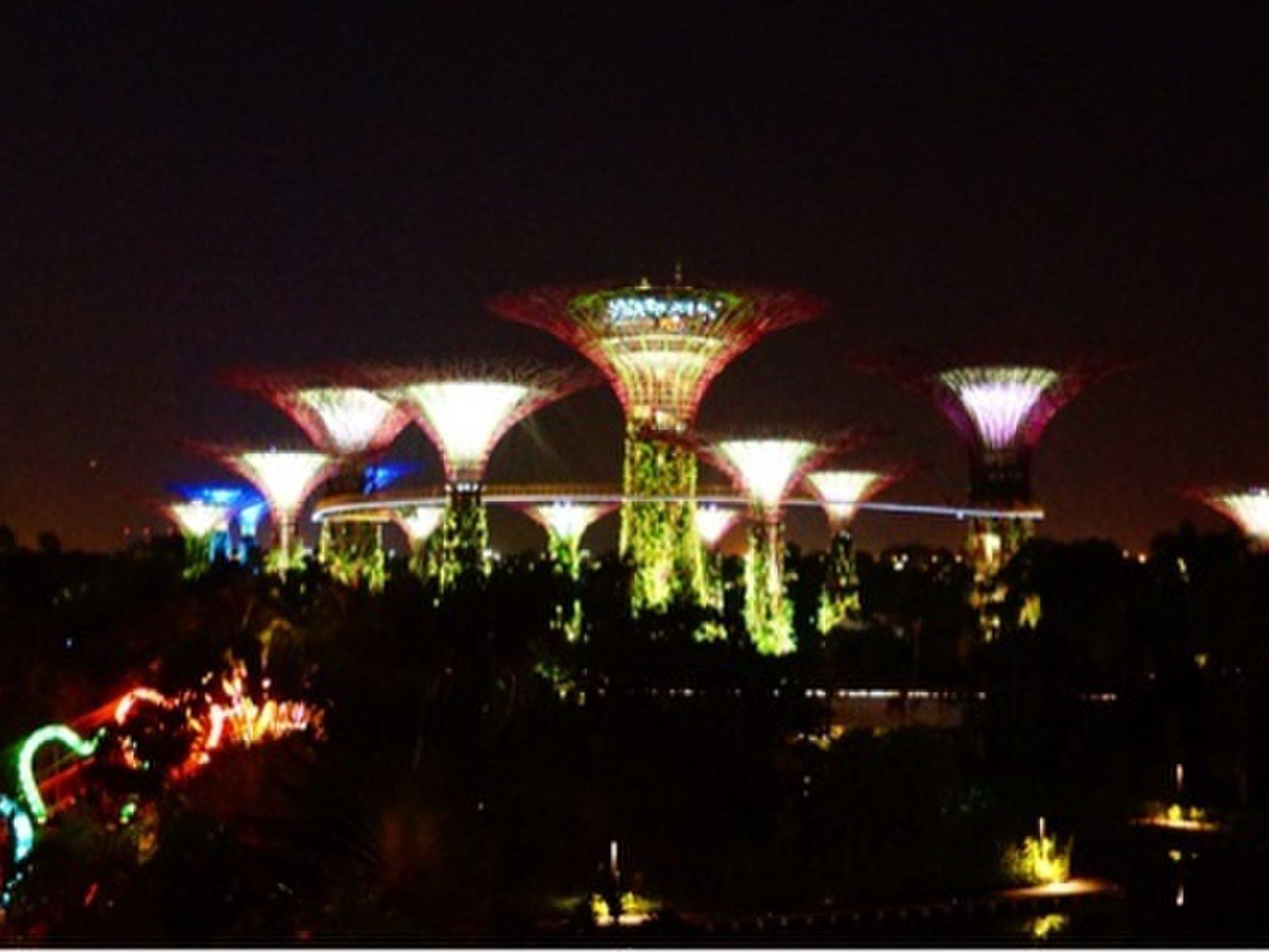 【シンガポール旅行】必見ナイトスポット。夜景が感動的に綺麗なおすすめコース