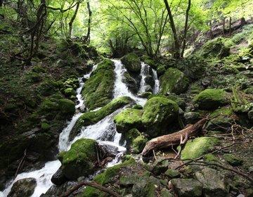 奥多摩・大岳山から御岳山へ登山、東京とは思えない大自然を満喫!【大岳鍾乳洞、小滝、大滝、大岳山荘】