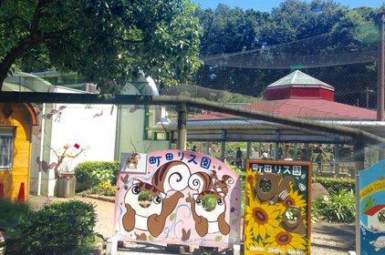 町田リス園