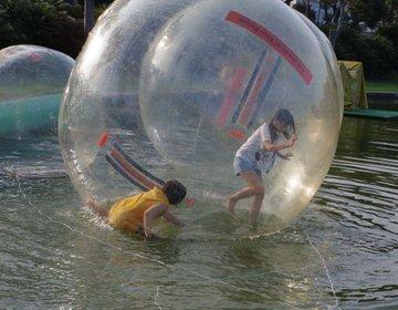 テラスハウス効果で話題の「伊豆ぐらんぱる公園」!ウォーターボールで大はしゃぎ♪