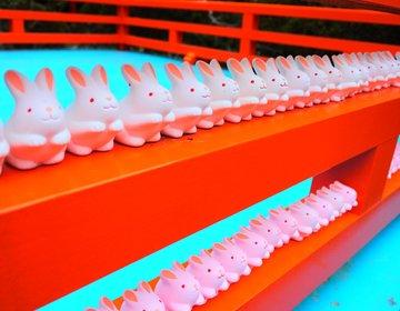 【京都・女子旅】女性殺到!狛うさぎに招きうさぎ!?インスタ映え抜群!うさぎまみれの可愛すぎる神社♡