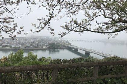 唐津城 (舞鶴公園)