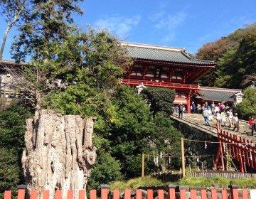 【湘南・鎌倉のドライブデートコース】江ノ島観光も出来るおすすめプラン♪