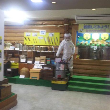 藤井養蜂場 ビーズファーム