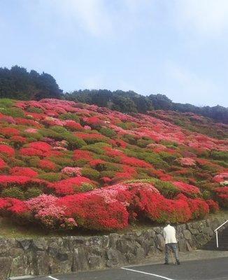 長串山公園