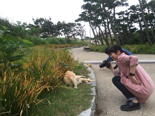 県立城ケ島公園