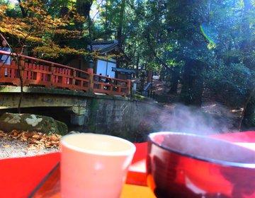 【穴場・紅葉】鹿にも会える!二月堂から春日神社へ向かうなら絶対に寄って欲しいお茶屋さん!