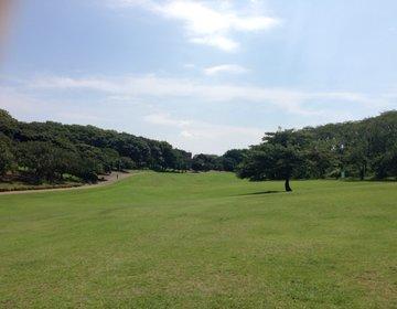 【横浜山手で穴場デート】自然がいっぱいの森林公園!春休みにピクニックや桜のお花見ができるスポット!