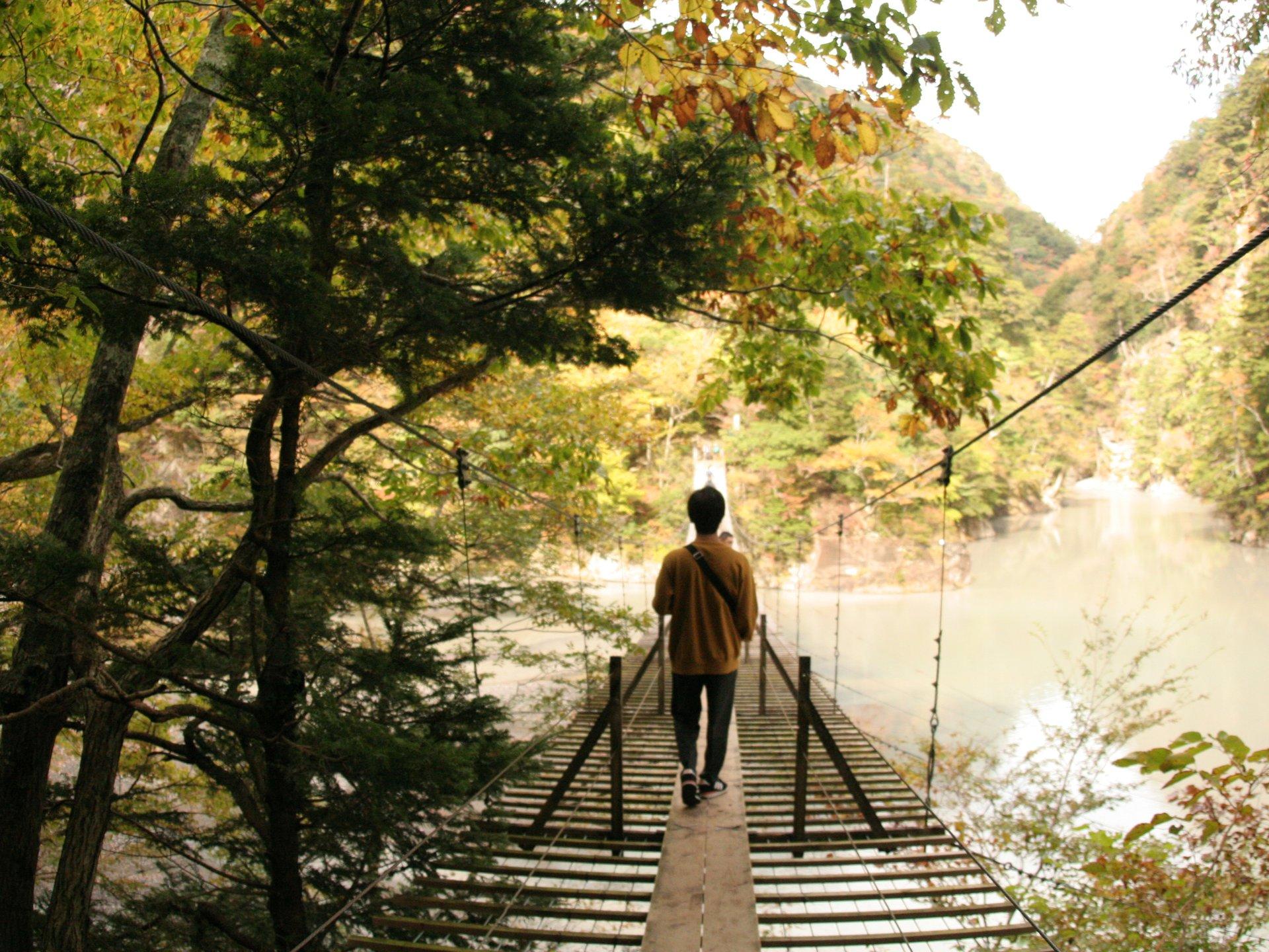吊り橋ドキドキ体験!静岡にある「夢の吊り橋」ってどんなとこ?