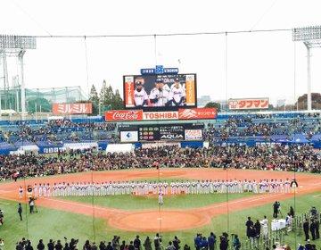 観戦前にしておきたい野球観戦がもっと楽しくなる方法!【スワローズ検定】で私も野球通!?