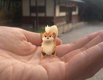 【京都でポケモンGO!】嵐山公園亀山地区はガーディの巣?気になる噂を徹底検証!その結果は?