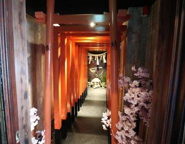 東京・新宿 忍者からくり屋敷に潜入! 忍術、刀、手裏剣の使い方を学ぶ!