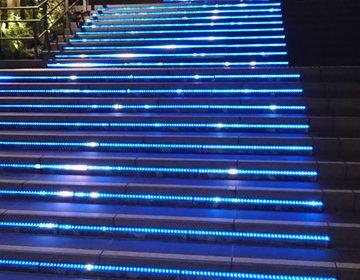 【大井町線沿い 夜のジョギング】東急線沿線の夜の公園巡り