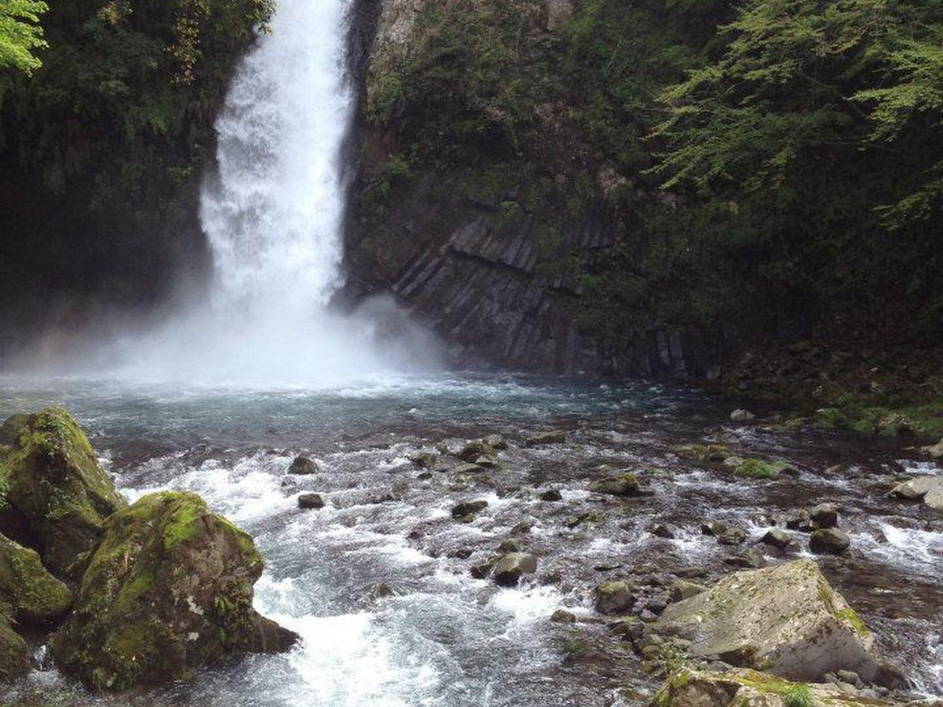 【伊豆ドライブ】海・山・滝・秘湯~大自然のすべてを詰め込んで~