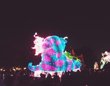 ディズニーランドの夜のエレクトリカルパレードの穴場位置☆並ばない&美味しいお肉が食べれる!