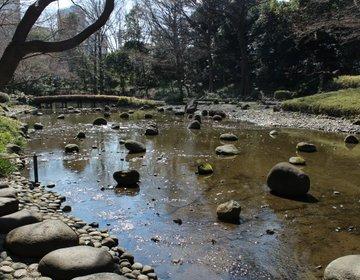 公園初心者でもおすすめ!自然に触れて癒されたいなら小石川後楽園へ。