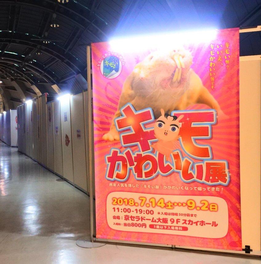 京セラドーム 大阪スカイホール