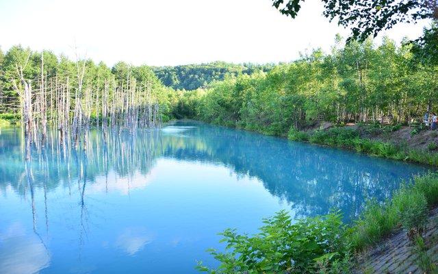 青い池 (Blue Pond)