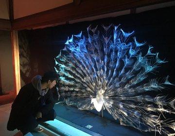 超絶技巧の職人技アートを堪能するなら百段会談@ホテル雅叙園東京へ