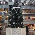 新千歳空港 (New Chitose Airport - CTS/RJCC)