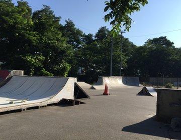 茅野市、運動公園、スケートパーク