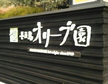 魔女の宅急便のパン屋さんがある♡小豆島・女子旅♡