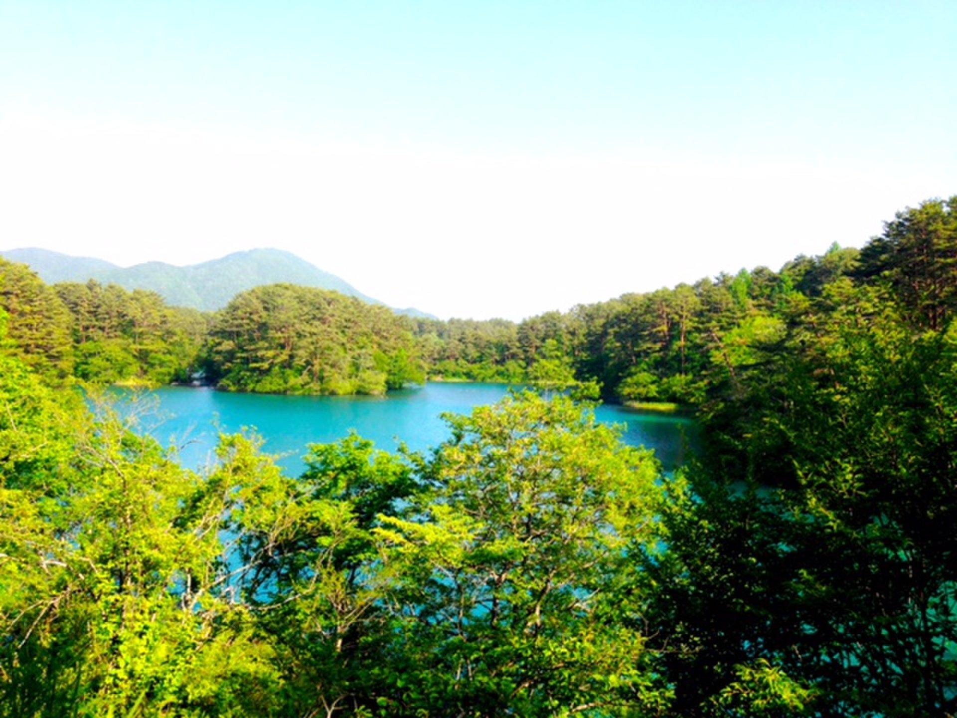 福島ドライブ!絶景&グルメを満喫できるおすすめドライブスポット13選