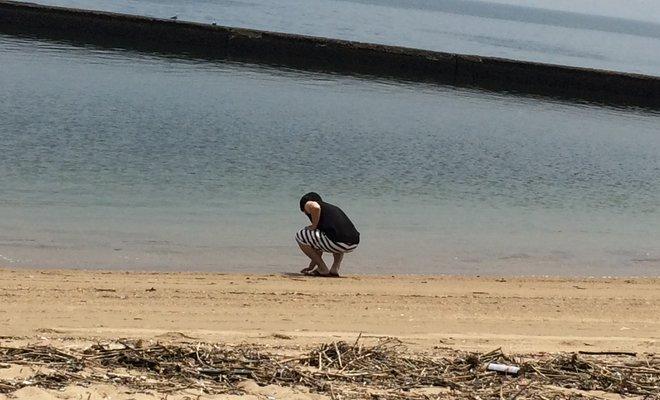 的ケ浜公園