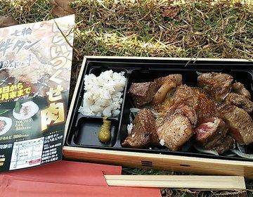 新宿から25分で行ける!日本最大級の食の祭り【肉フェス】を見逃すな!