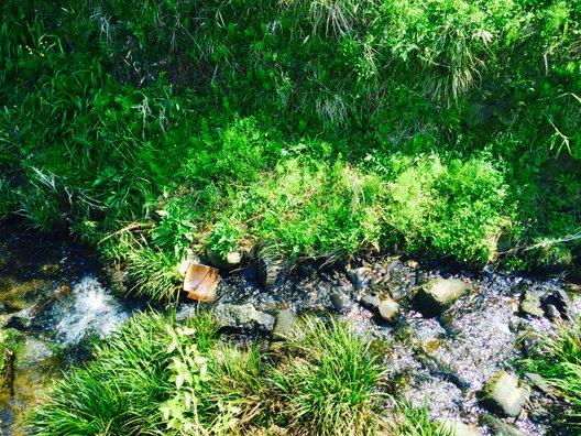 石見銀山公園