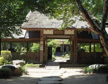 ここ、見たことない?あの三太郎のCMにも使われた茅葺屋根が印象的です♪栃木県大田原市「大雄寺」