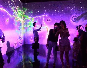 夏休みにおすすめ!チームラボ・未来の遊園地が期間限定ハルカス美術館にて開催中!