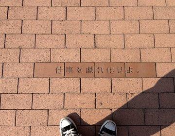 【横浜みなとみらい観光スポットを散歩】観光名所が廻れるお昼におすすめコース