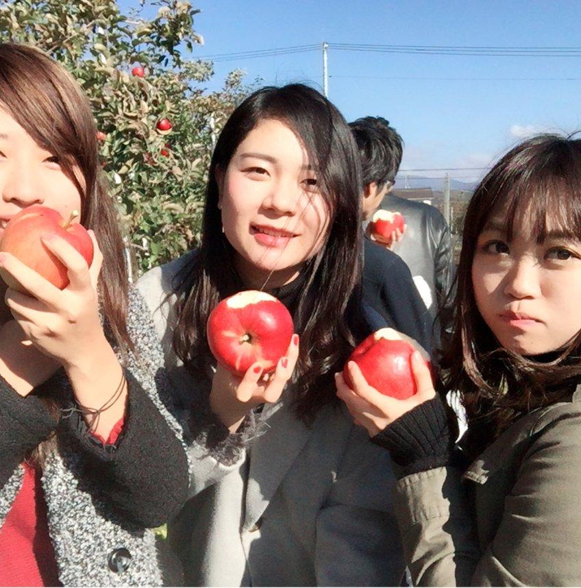 松永わい化りんご園