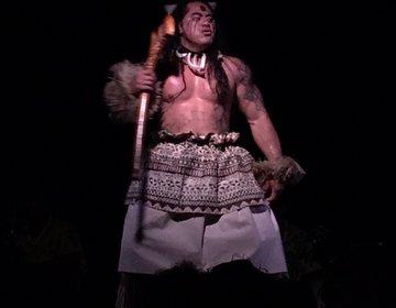 ハワイ・ワイキキでルアウ★ショーだけ観たいトラベラーには「テ・モアナヌイ」