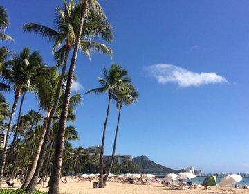 【ハワイのコンドミニアム】話題のタイムシェアでアワビと伊勢海老が格安食べ放題!大人のハワイ満喫法
