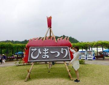 ゴールデンウィークにおすすめの笠間焼きのお祭「ひまつり」は無料の美術館みたいに楽しめる♡デートにも!