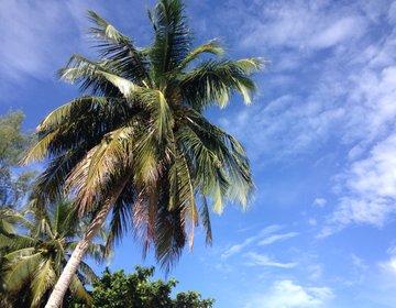 【マレーシア在住が教える】3泊4日ランカウイ島1万5000円の旅