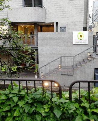 AVOCADO 京都店