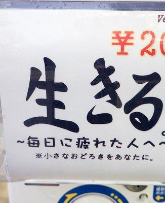 リバティー秋葉原5号店