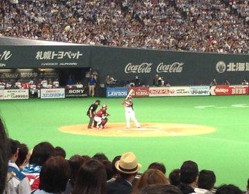 札幌ドームで日ハム観戦☆野球初心者でも応援歌、グルメ&スイーツ、ダンス、勝利の花火で楽しめる♪