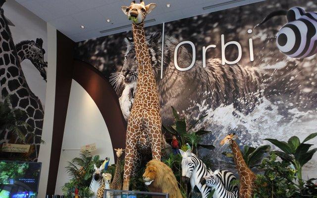 Orbi Osaka(オービィ大阪) (1/29グランドオープン予定)