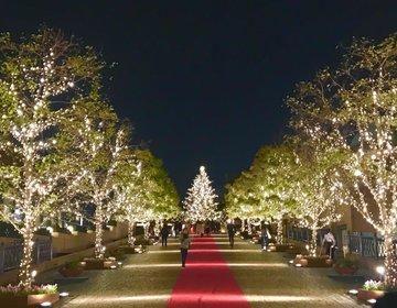 【アラサーアラフォー向き・大人のクリスマスデート】オススメデートプランは恵比寿で♡