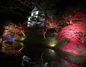 【弘前の美しすぎる観光地】日本一の公園や繊細な田んぼアートに感激!田舎ならではの満足感!