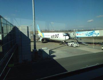 【機内で北海道を感じよう!】北海道の空港経由の飛行機旅行なら「北海道の翼」AIR DOがお得で快適!