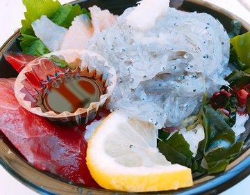 生しらすがキラキラと光り輝く!淡路島名物生しらす丼を「道の駅あわじ」で食べよう